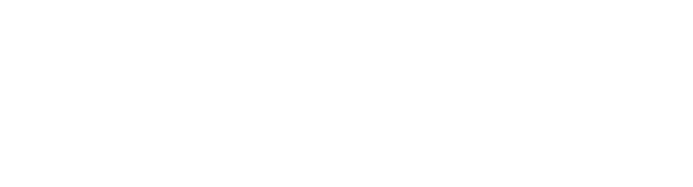 Logo CNR White