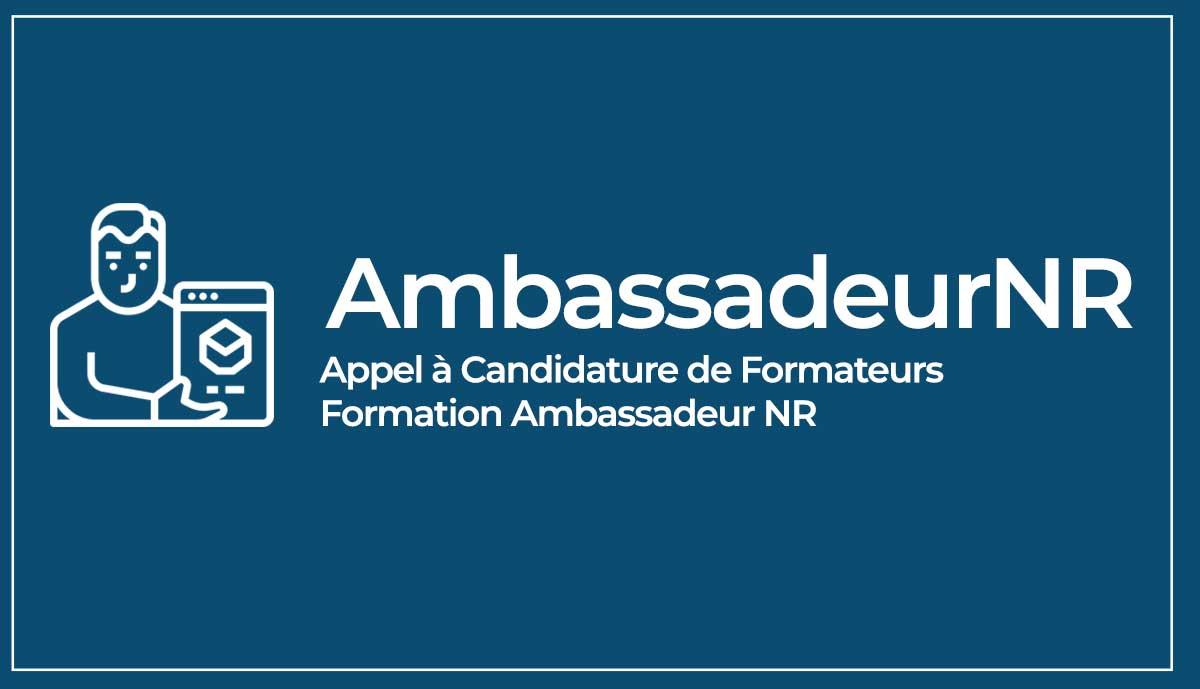 Formation Ambassadeur Numérique Responsable